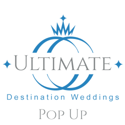 UDW Pop Up Logo